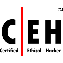 CEH Certification Training Bootcamp in Washington DC, San